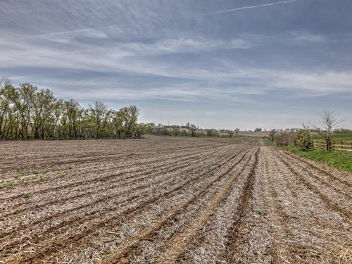 Bennington Mixed Use Land : Elkhorn : Douglas County : Nebraska