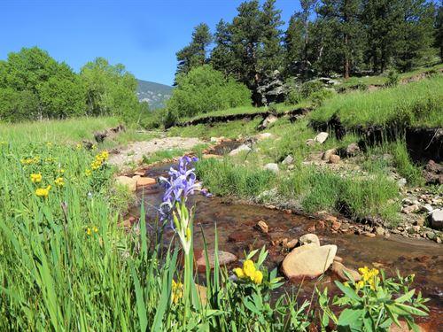 Little Creek Ranch : Allenspark : Larimer County : Colorado