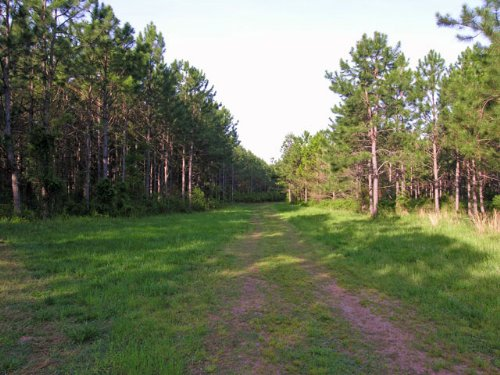 226 Acres On The Little River : Washington : Wilkes County : Georgia