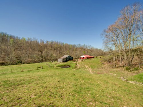 145 Acres On Dog Creek : Primm Springs : Hickman County : Tennessee