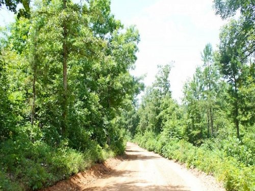 12.59 Ac Lot 15 Greenmountain Ranch : Winona : Shannon County : Missouri