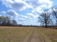 Liles Property : Cecil : Montgomery County : Alabama
