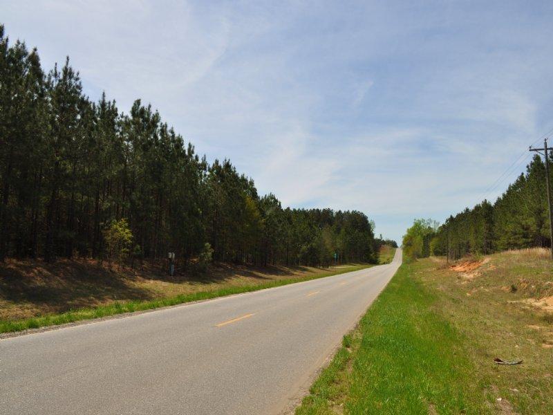 Pine Meadow : Lexington : Oglethorpe County : Georgia