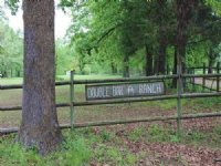 Beautiful 120 Acre Ranch (#29906)