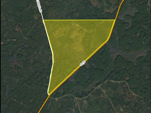 371 Acres State Road 59 : Monticello : Jefferson County : Florida