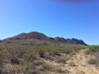 40.00 Acres Hunting Land, Ranch
