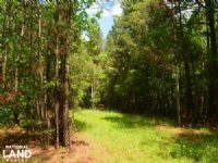 Athens Timberland With Development : Athens : Jackson County : Georgia
