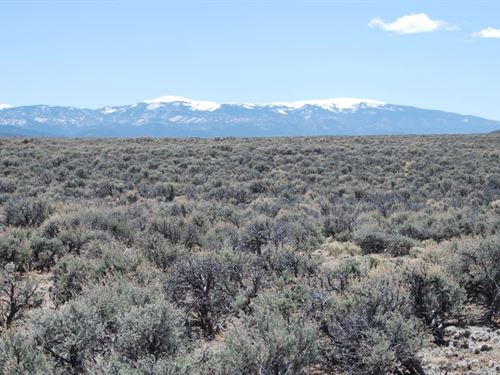 10 Acres In Sanford, CO : Sanford : Costilla County : Colorado