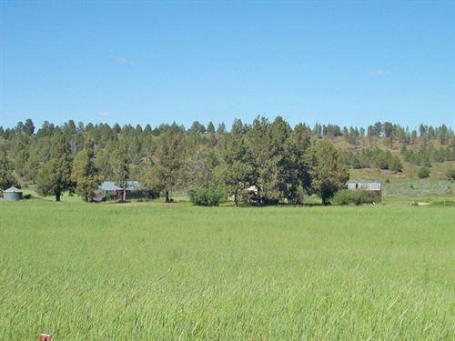 Gorgeous Productive Valley Farm : Bonanza : Klamath County : Oregon