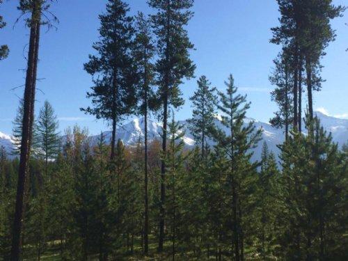 Mission Mountain & Swan Range : Condon : Missoula County : Montana