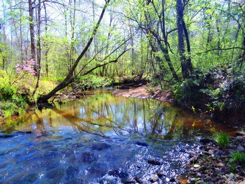 Windy Creek Farms : Dadeville : Tallapoosa County : Alabama
