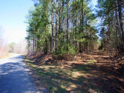 215 Acres : Meherrin : Prince Edward County : Virginia