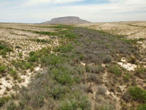 High Desert 90 Acres : Alpine : Brewster County : Texas