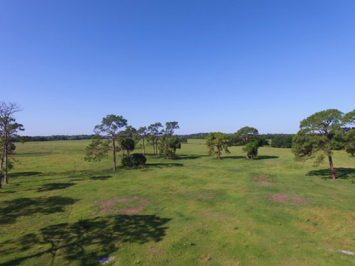 Dunn 80 Acres : Okeechobee : Florida