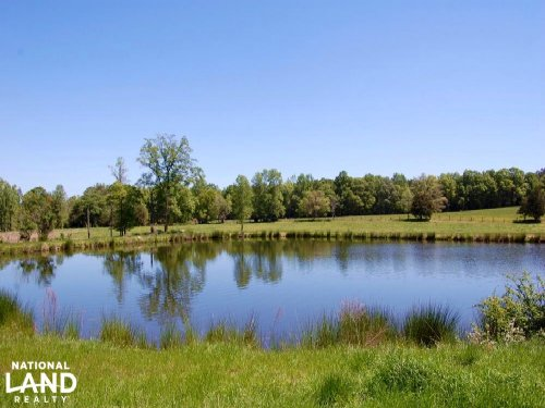 Pasture And Cattle Farm : Lancaster County : South Carolina