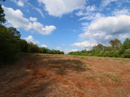 58+/- Acres Farm & Hunting Land : Sycamore : Talladega County : Alabama