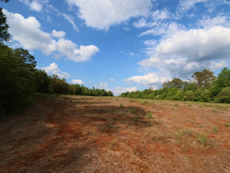 58+/- Acres Farm & Hunting Land : Sylacauga : Talladega County : Alabama