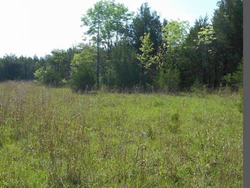 80 Acres In Clay County : Abbott : Clay County : Mississippi