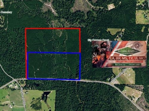 74 Ac - Managed Timberland With Hom : Warren : Tyler County : Texas