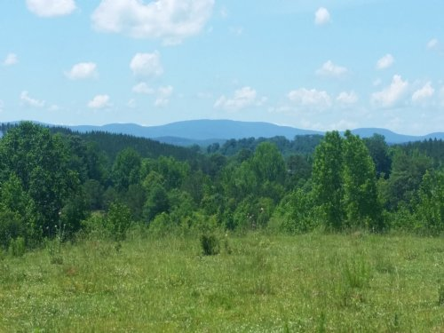 Mt. Cheaha View Farm - 66+/- Acres : Delta : Clay County : Alabama
