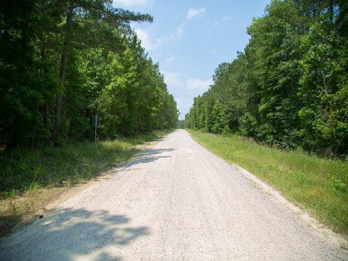 156 Ac Cleveland Cemetery Rd : Oakhurst : San Jacinto County : Texas