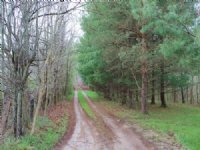 Ransom Rd - 136 Acres : Mount Vernon : Knox County : Ohio