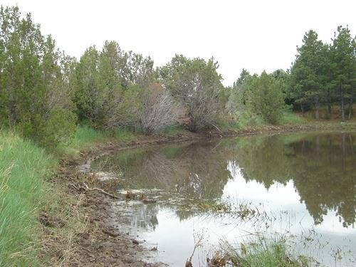 Vaughn Ranch Lot 10 : Pueblo : Colorado