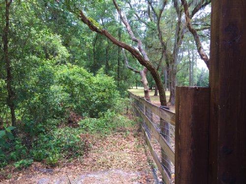 10± Acres Build Your Dream Home : Brooksville : Hernando County : Florida