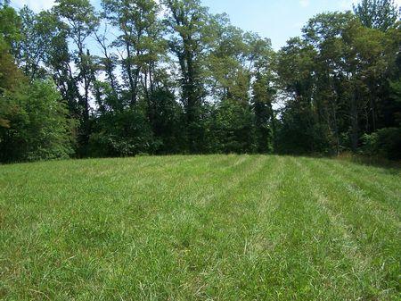 10. Acres, Elk Creek, Va  Private : Elk Creek : Grayson County : Virginia