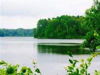 171 Acres - Lakefront (#30012)