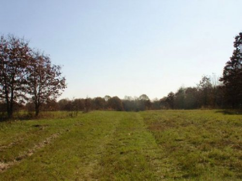 15.7 Acre Tranquility Farms Lot : Hugo : Choctaw County : Oklahoma