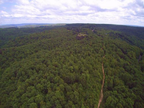 72+/- Acres Nature Lovers : Palmer : Grundy County : Tennessee
