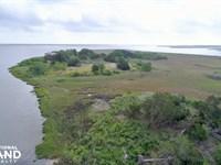 Dolbow Island : Darien : McIntosh County : Georgia