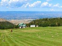Montrose Ranch
