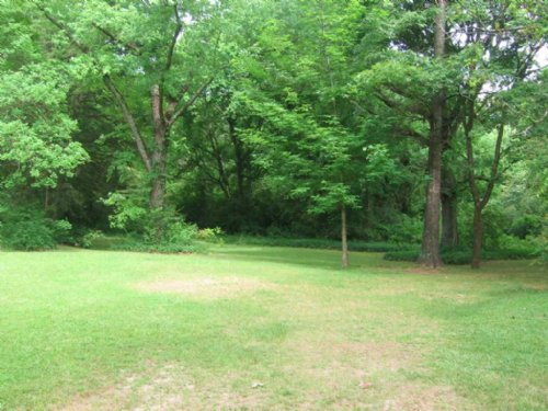 55+/- Ac & Hunting Camp : Carrollton : Carroll County : Mississippi
