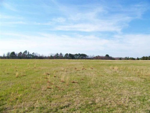 52 Acres Of Mostly Pasture : Cochran : Bleckley County : Georgia
