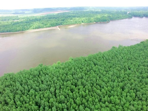 210 Acres, Pike Rd 2 : Annada : Pike County : Missouri