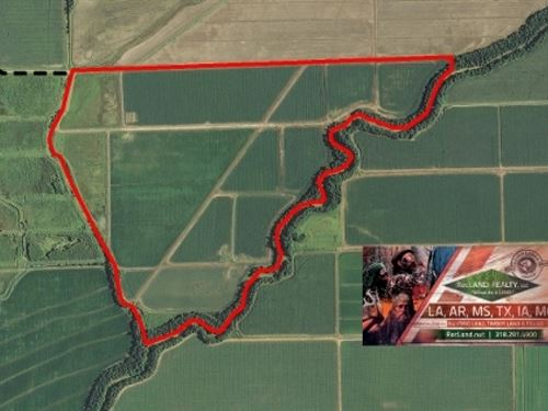 244 Ac - Irrigated Farm & Duck : Alsatia : East Carroll Parish : Louisiana