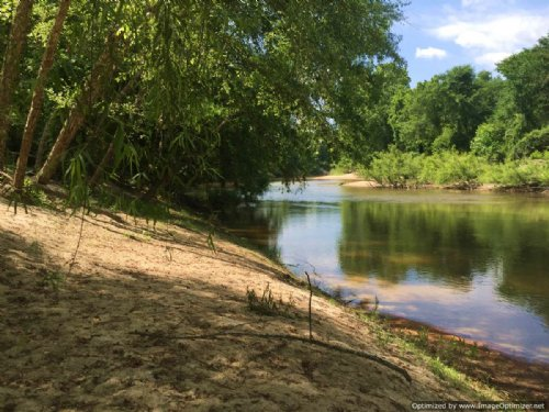 200± Acres On The Strong River : Pinola : Simpson County : Mississippi