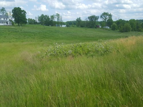 Start Your Homestead : Langsville : Meigs County : Ohio