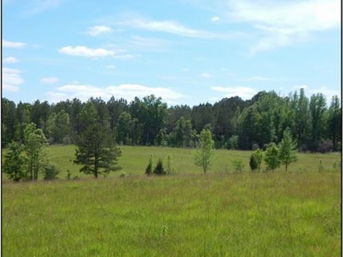 125 Acres In Madison County In Camd : Camden : Madison County : Mississippi