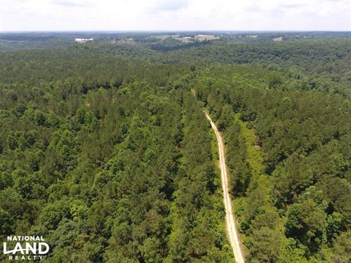 Vinemont Timber Investment : Vinemont : Cullman County : Alabama