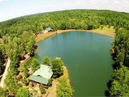 Horse Farm - Lake Oconee : Greensboro : Greene County : Georgia