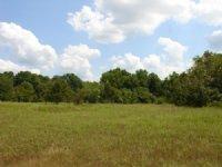 8.52 Acre Lot 29 Saddlebrook Ranch