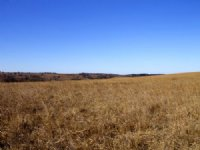 Cowboy Meadows Ranch Land Terms