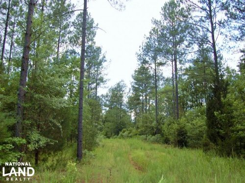 McConnells Hunting And Timber Inves : McConnells : York County : South Carolina