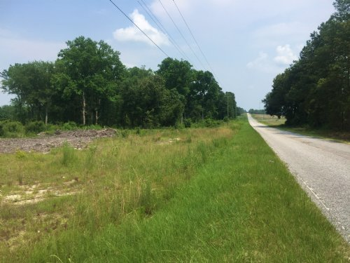 50 Acres For Sale : Cheraw : Chesterfield County : South Carolina
