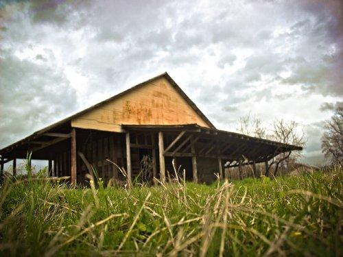 172 Acres Hwy 7 : Crockett : Houston County : Texas
