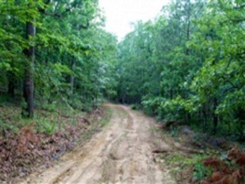 14.24 Acre Trophy Ridge : Clayton : Pushmataha County : Oklahoma
