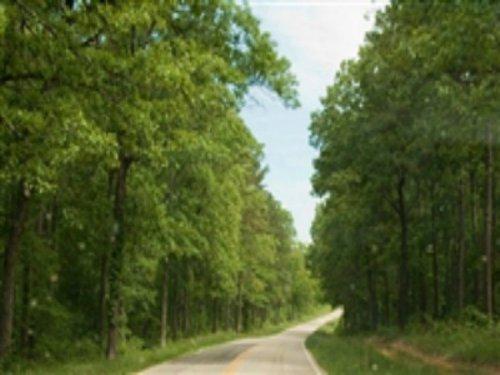24.38 Acre Blue Sky Ranch, Creek : Winona : Shannon County : Missouri